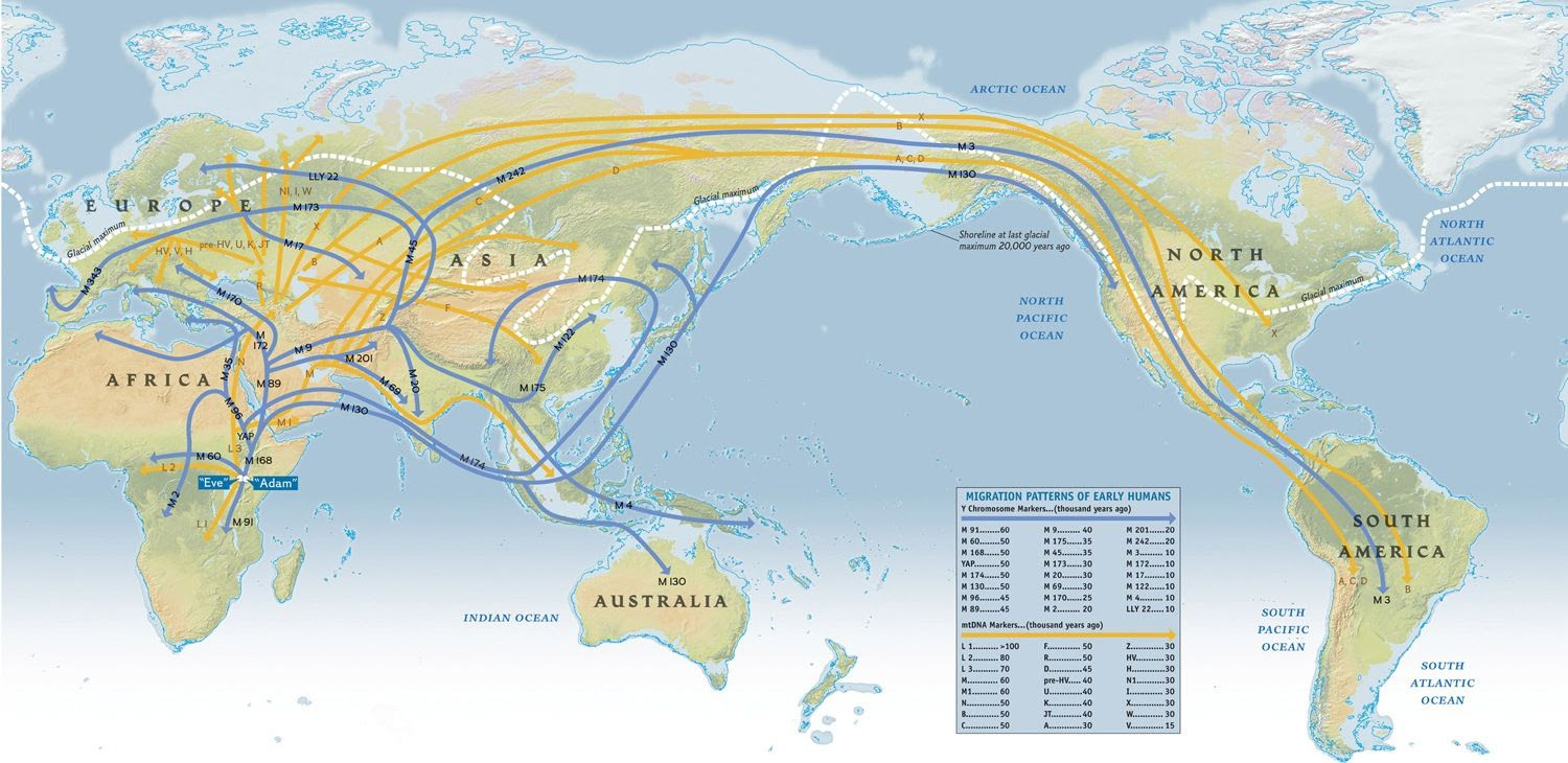 Migration Patterns Of Humanity Map