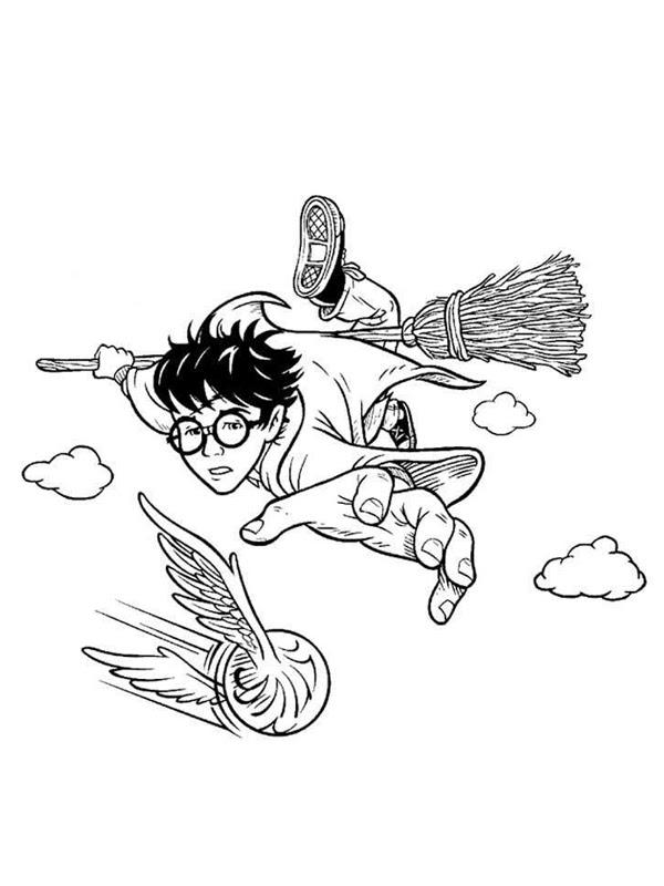 Coloriage A Imprimer Harry Potter Joue Au Quiddich Gratuit Et Colorier