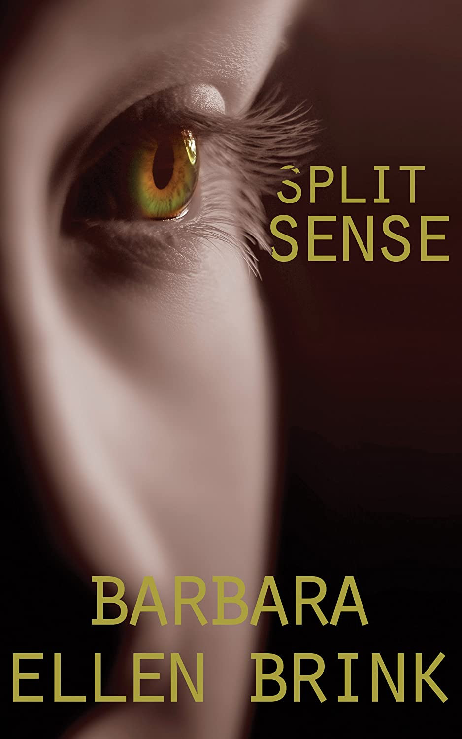 http://www.amazon.com/Split-Sense-Barbara-Ellen-Brink-ebook/dp/B006BHXDKA/ref=sr_1_1?s=books&ie=UTF8&qid=1388672230&sr=1-1&keywords=split+sense