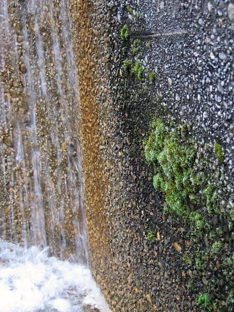 Lovejoy Fountain Plaza, August '06