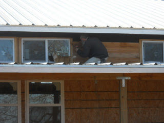 William Our Cat Supervising Putting on the Siding