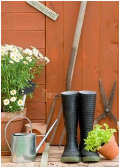 Beginner Gardening Tools