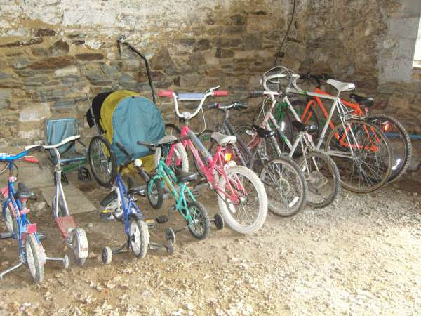 Adults and children's bikes all in a line in the barn, ready for holiday use
