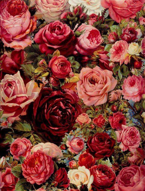Download 960+ Wallpaper Rose Tumblr Gratis Terbaik