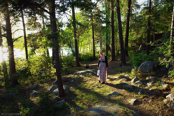 aliciasivert, alicia sivertsson, nature, water, waters, trees, sunset, salighetsdag, natur, vatten, träd, lisa den sensationella, solnedgång