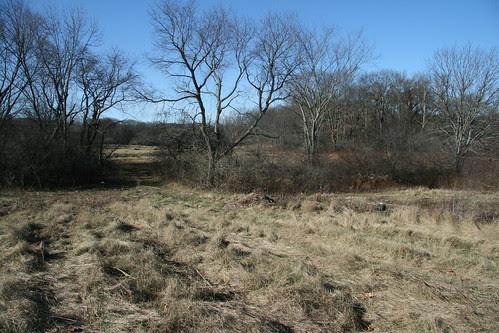 late November fields