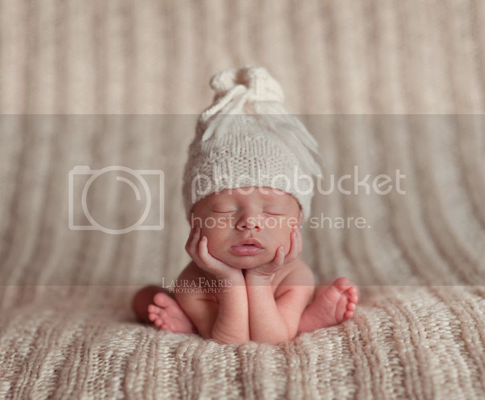 meridian idaho newborn photographers