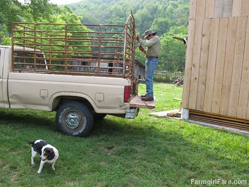 (32-16) Trying to get the sliding gate on the rusted old stock rack, which was falling apart when I bought it 18 years ago, to work - FarmgirlFare.com - Copy - Copy