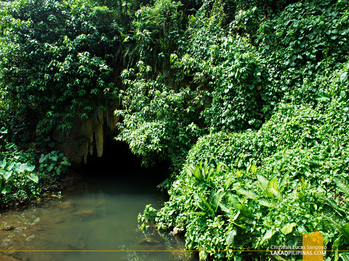 Natural Cave at Iligan's NPC Nature's Park