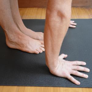 yoga anatomy sun salutations