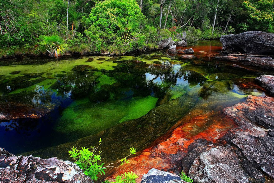 cool-unbelievable-places-Earth-Cristales-River