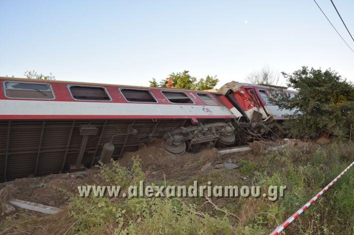 alexandriamou_treno_adentro2135