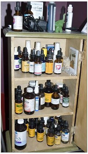 Healthy or insane shelf 3