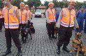 Kenalkan, Ini Empat Anjing Pelacak untuk Evakuasi Korban Bencana...