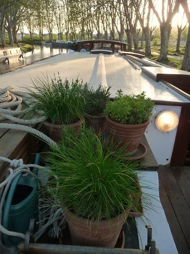 Barge Herb Garden