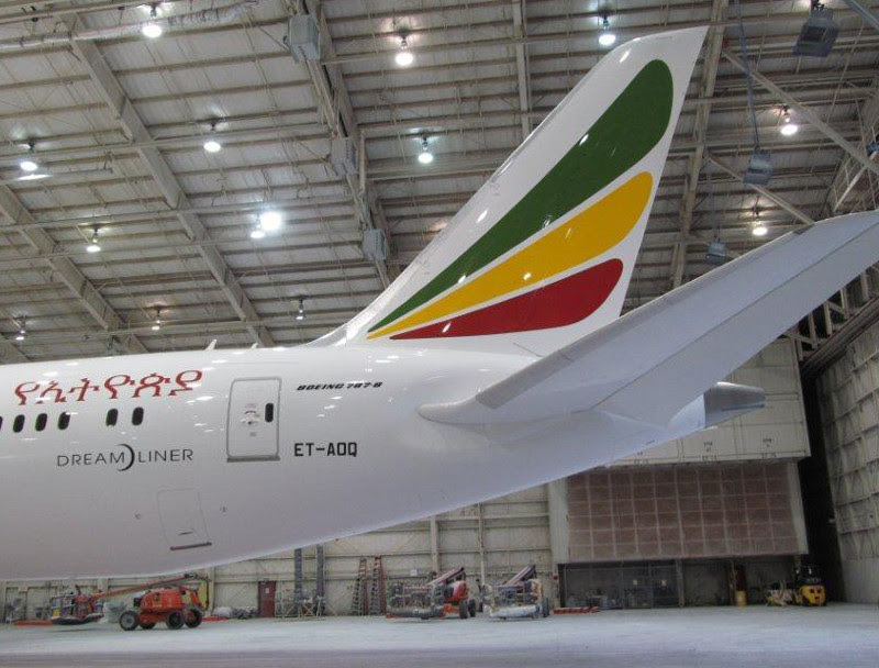 Ethiopian Airlines Dreamliner ET-AOQ [Click to Enlarge]