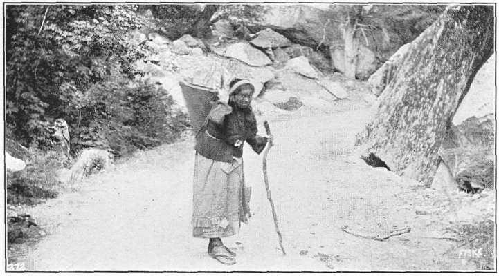 Photo of a Burden Bearer