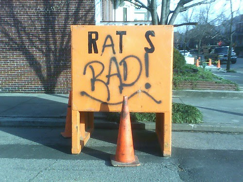rats is the word