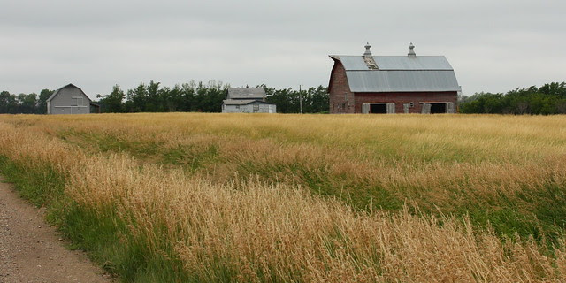 Farm Buildings in SD