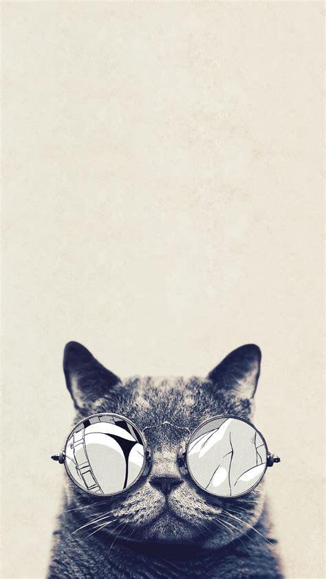 cool cat glasses iphone   hd wallpaper hd