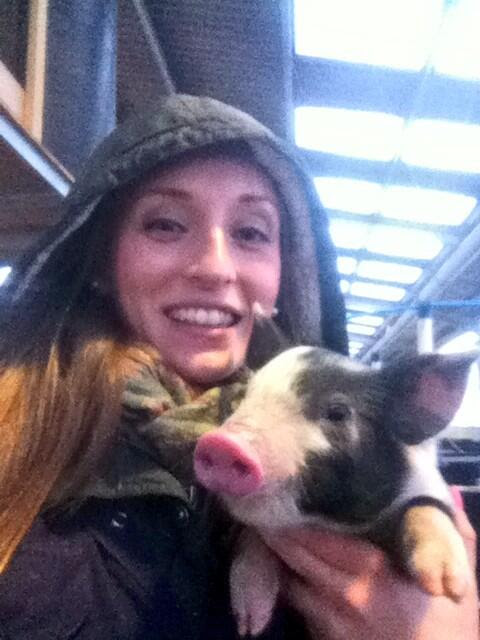 Piglets make great photos!