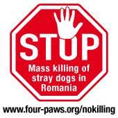 Stop killing of stray dogs in Romania!