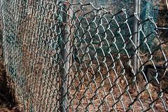 skippys vegetable garden fences  works