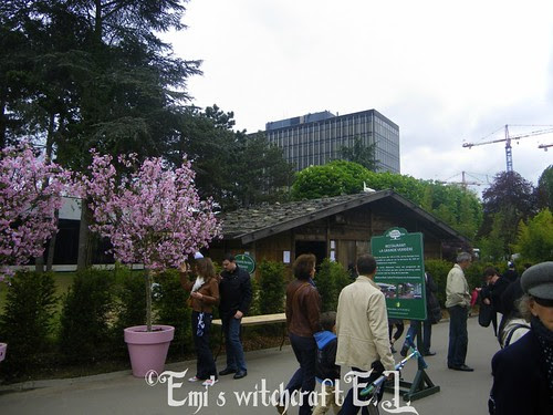 Jardin d'aclimatation 7