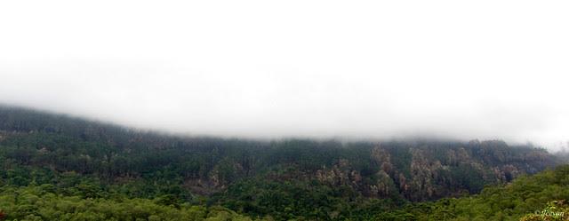 Mist spread on mountains