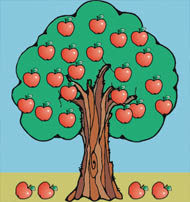 Agaclarnet Elma Ağacı
