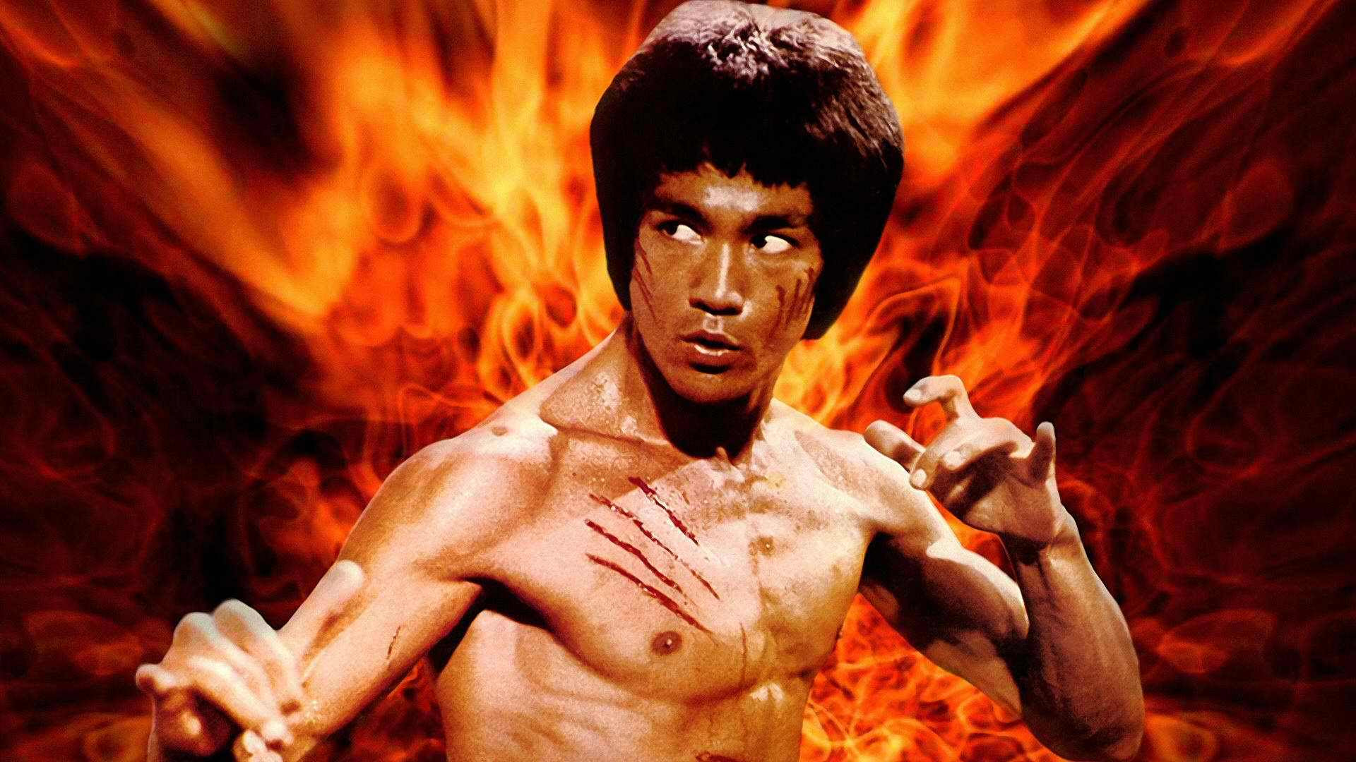 Image result for bruce lee fire