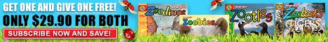 Zoobooks.com