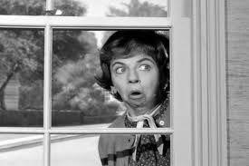 photo Gladys-Kravitz-nosy-neighbor-peeking-window2_zps059ec3cf.jpg