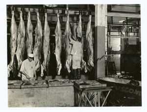 Final inspection of cattle Digital ID: 110212. New York Public Library