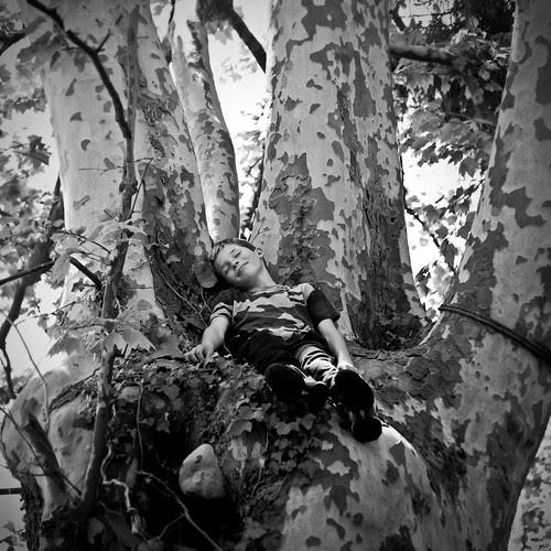 The hand tree por Hel Des