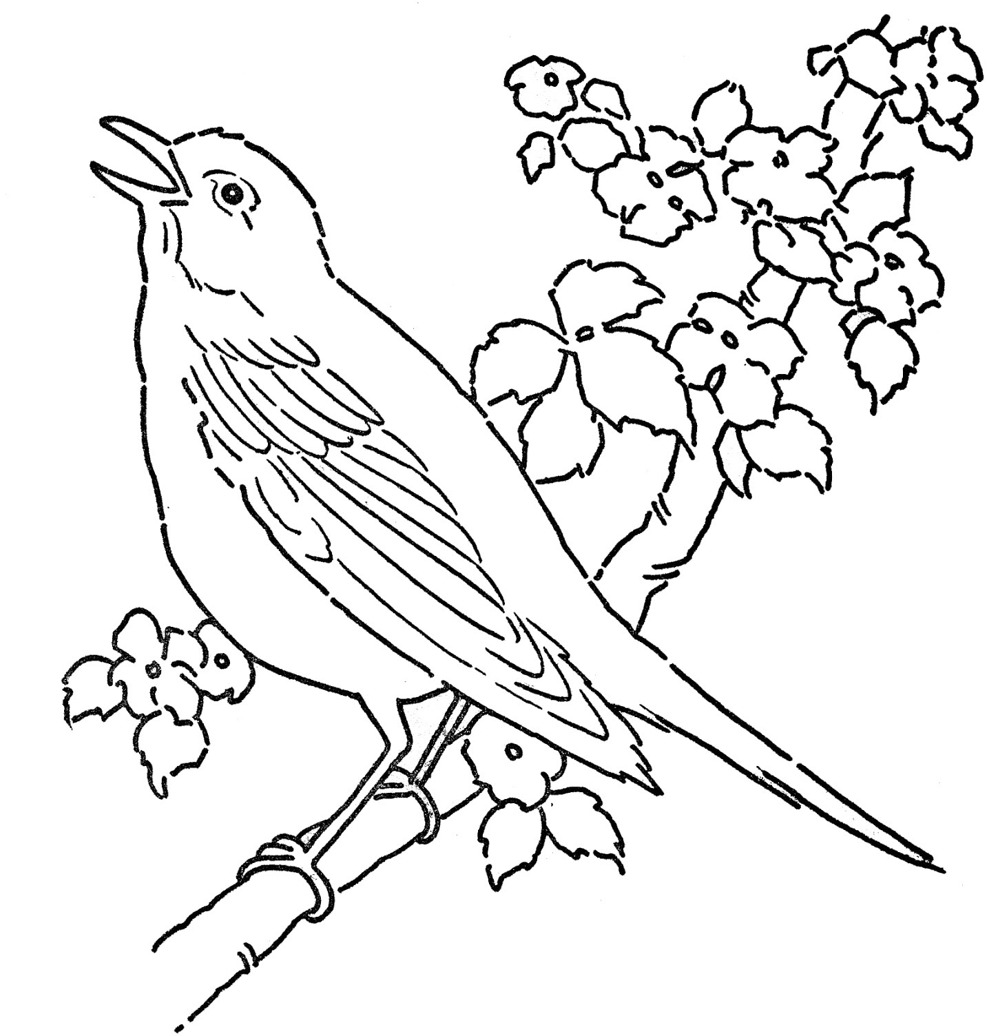 Letter B is for Bird coloring page | Free Printable Coloring Pages | 1504x1449