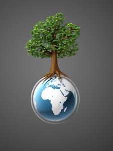 IVACE abre el plazo para presentar proyectos de eficiencia energética y energías renovables