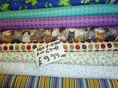 13 - Kitty Fabric