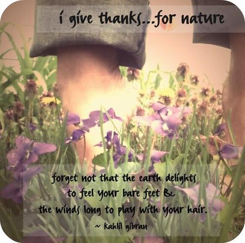 {Gratitude} Day 19 ~ Nature
