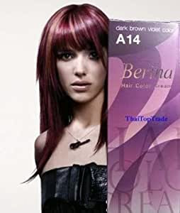 Amazon.com : Berina Permanent Hair Dye Color Cream  A14 Dark Brown Violet Made in Thailand : Beauty