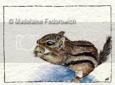 Winter Chipmunk ACEO