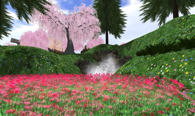 Seychelles Garden - 01