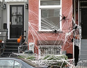 """""""Spider infestation"""" at a row house ..."""