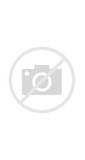Effects Of Acute Pain On The Body