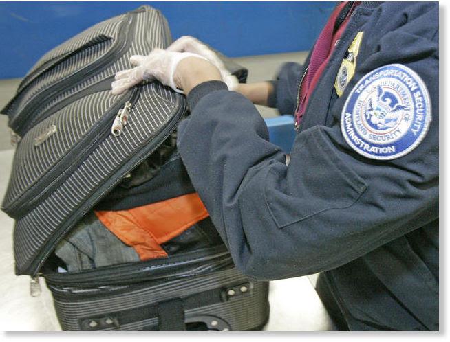 TSA theft