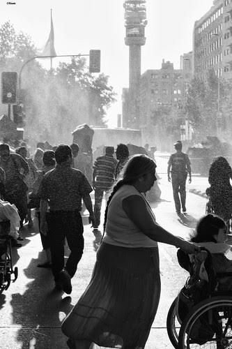 Cuando el guanaco no perdona a nadie by Alejandro Bonilla