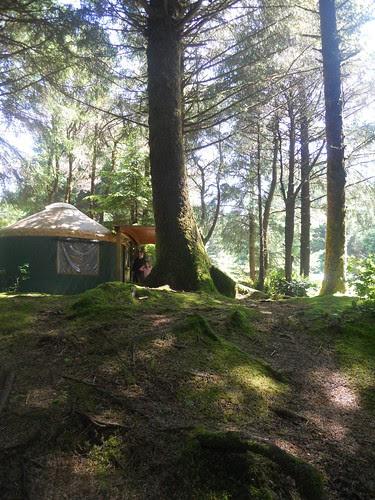hobbit trails 002