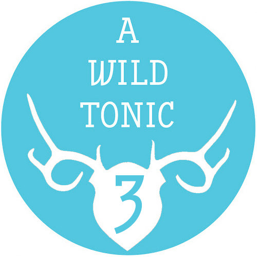 A Wild Tonic Turns 3!