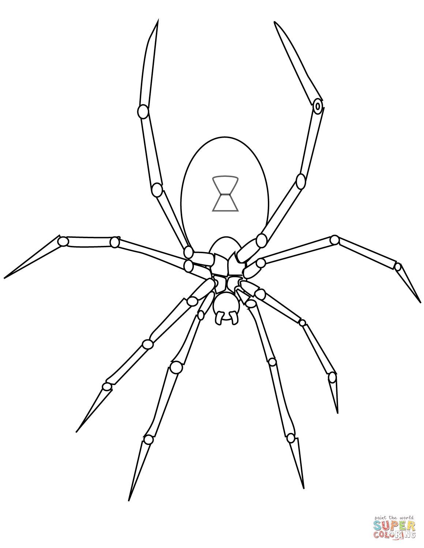 Dibujo De Caricatura De Una Araña Para Colorear Dibujos Para