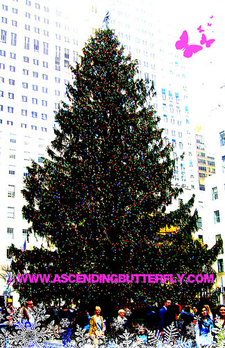 Rockefeller Center Christmas Tree 01 WATERMARKED 2012